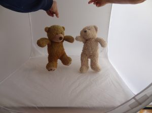 Logo photo_dancing bears