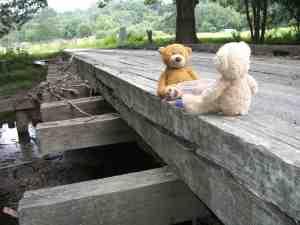 belengin bridge picnic