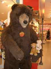 Berlin brown bear
