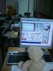 work-bears-2