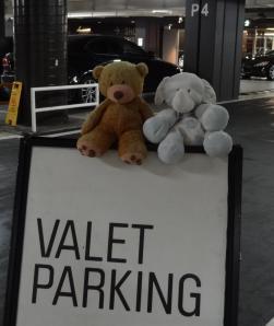 Valet parking_sign