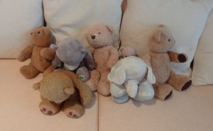Guilty teddies