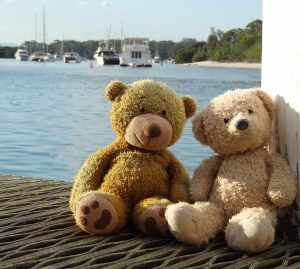 Boats and bears