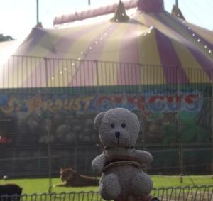 Circus_Ccino