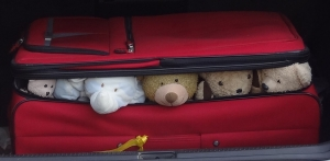 Suitcase teddies 1