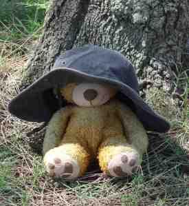 Paddington Bear_Bobby
